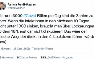 Rendi-Wagner uyardı: Kilitlenmenin hafifletilmesini...