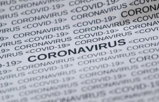 Koronavirüs: Rakamlarla Avusturya'da son durum