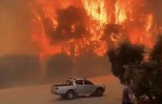 Manavgat'ta büyük orman yangını! Yerleşim...