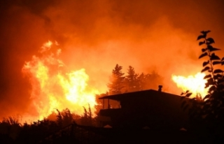 Türkiye yanıyor! Yangınlarda son durum