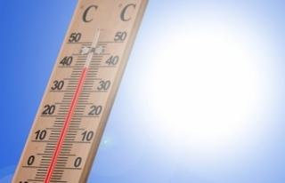 İklim değişikliği: Sıcaklığın 50 derecenin...