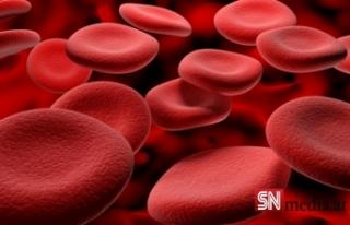 En sağlıklı kan grubu hangisi?