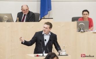 """Yukarı Avusturya Yeşiller Başkanı: """"Bir devlet adamı ülkesi için bir adım geri atar."""""""