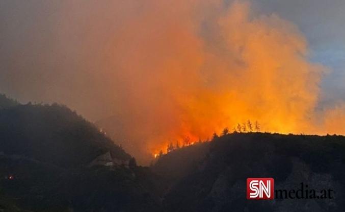 Manavgat'tan sonra bir orman yangını daha!